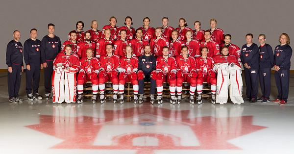 Bergen Ice Hockey 2016