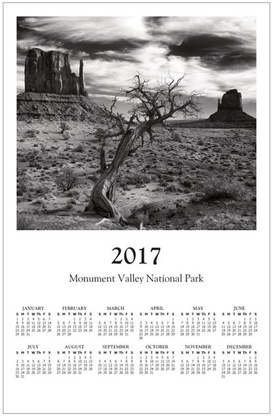 Calendrier poster 2017