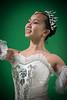 The Snow Queen (11 of 29)