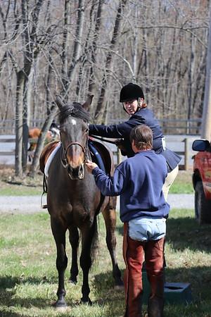 Two Horse Farm BuxMont