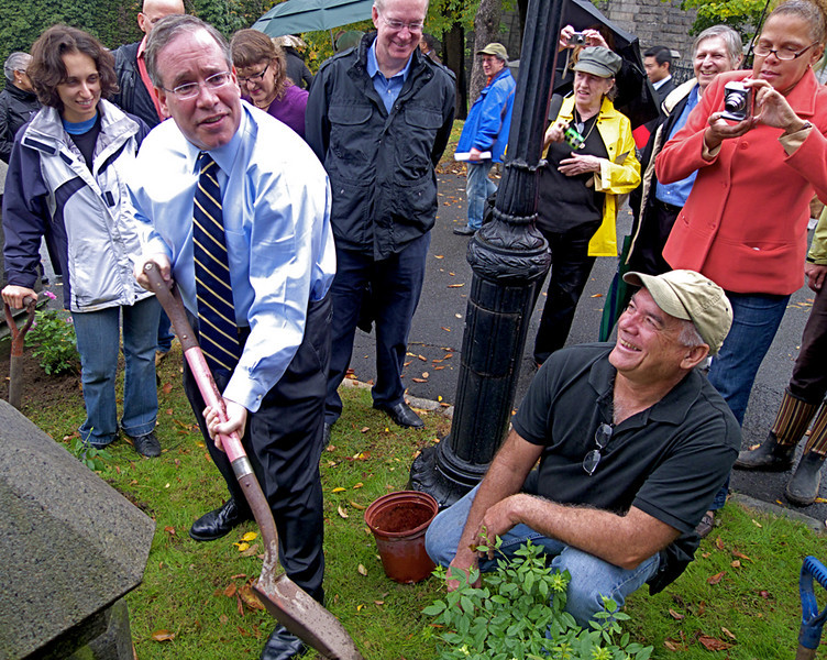 Manhattan Borough President Scott M. Stringer helps Heritage Rose Foundation president Stephen Scanniello plant the curious Green Rose. The ceremony at Trinity Church Cemetery & Mausoleum launched the new Heritage Rose District.