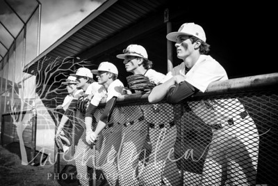 wlc Baseball Sen Boys 20181962018
