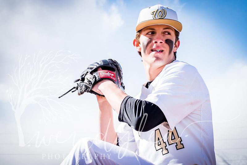 wlc Baseball Sen Boys 201832018