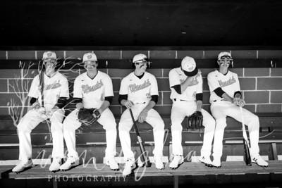 wlc Baseball Sen Boys 20181692018