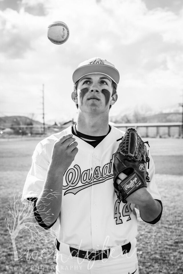 wlc Baseball Sen Boys 2018642018