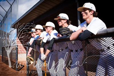 wlc Baseball Sen Boys 20181952018