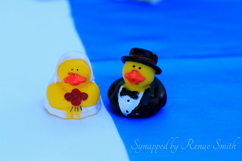 Rubber Ducky Marriage