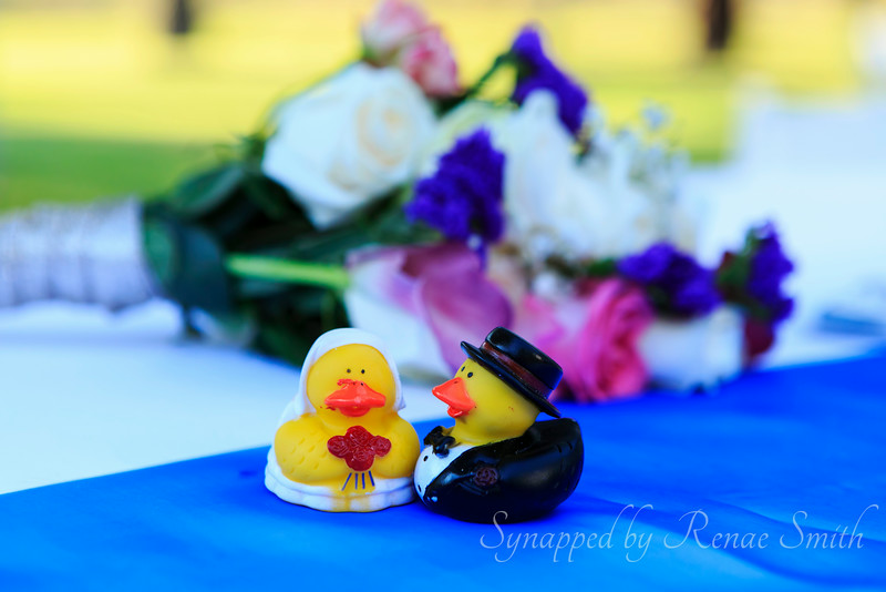 Rubber Duckies in Love