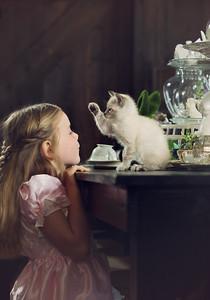 Wonderland-Hello-Kitten