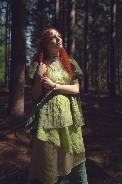 Wood Fairy - 2014
