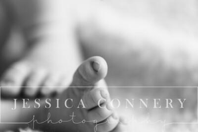 JessicaConneryPhotography--2