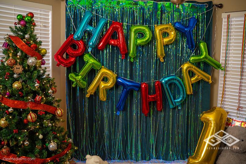 Zoey's 1st Birthday-08440