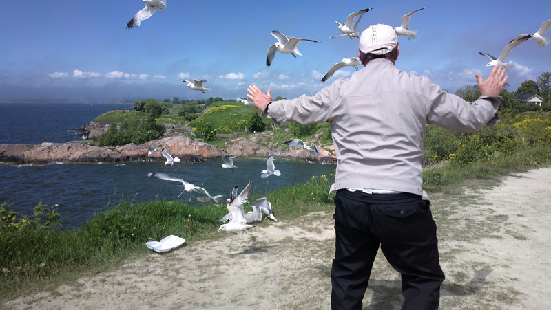The Seagull Whisperer