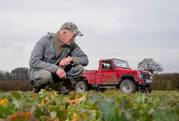 Land Rover on the farm