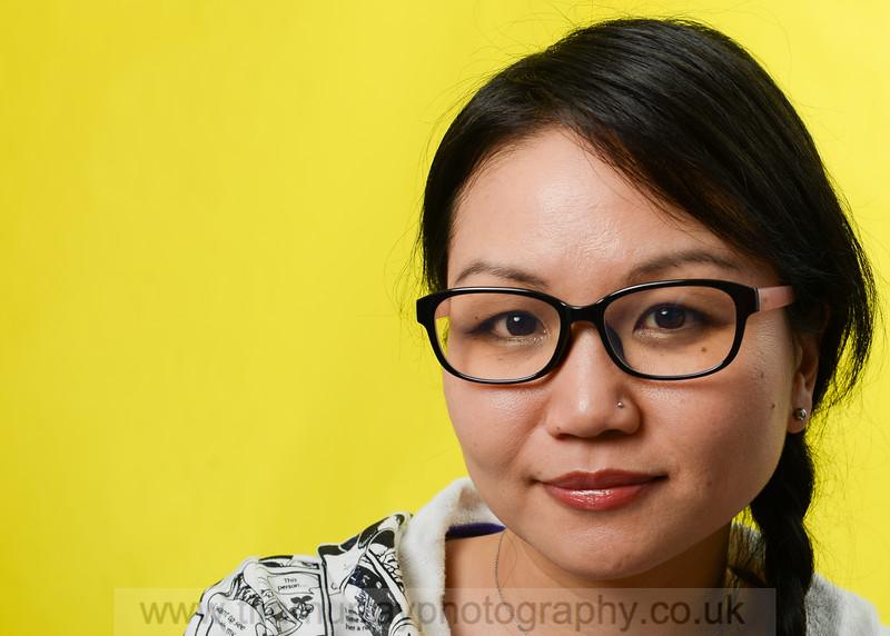 Junko Mizuno, Comic Artist