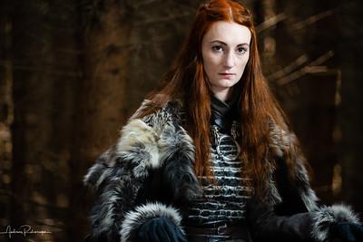 Costume: Sansa Stark
