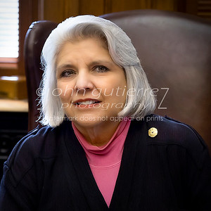 Texas Senator Judith Saffirini
