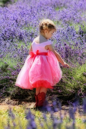 The Young Girl with the Red Cowboy Boots in Lavender