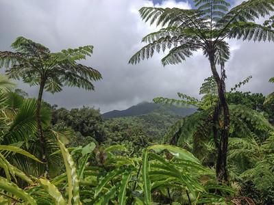 Puerto Rico 2013 - iphone photos