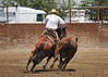 VCHA Derby May 4, 2013 (reining & cow work) : 6 galleries with 199 photos