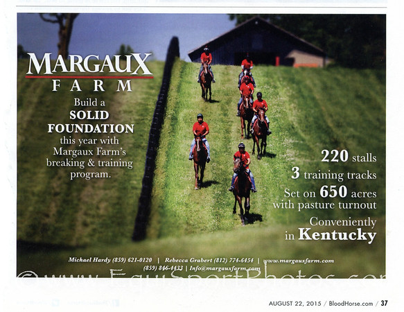 From the Bloodhorse 8/22/15
