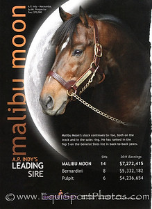 Malibu Moon, Spendthrift ad in Blood-Horse 12.17.2011