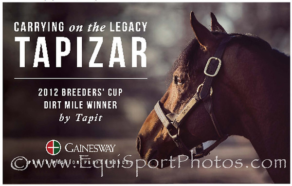 Gainesway ad in TDN 4.01.2014