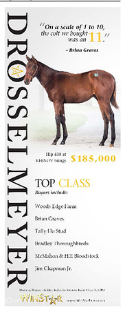 Drosselmeyer ad in the TDN 11.15.2013