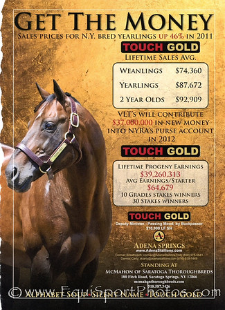 Touch Gold, Adena ad in Blood-Horse 2.11.2012