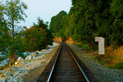 CAPTION: Walking The Railroad Tracks LOCATION: Boulevard Park, Bellingham, Washington DATE: 7-29-10 NOTES: I photographed the railroad tracks on a walk to the park HEADING: