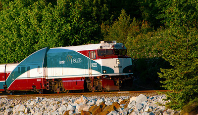 CAPTION: Cascade Amtrak LOCATION: Boulevard Park, Bellingham, Washington DATE: 6-11-11 NOTES:  HEADING: