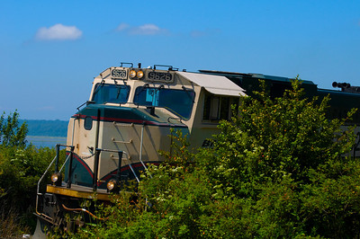 CAPTION: Train Running Beside Park LOCATION: Boulevard Park, Bellingham, Washington DATE: 7-18-10 NOTES: I photographed this fast moving train near Boulevard Park HEADING: