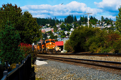 CAPTION: Marine Park LOCATION: Fairhaven, Washington DATE: 9-1-10 NOTES: My view of the coming train HEADING: