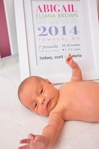 Abigail-newborn_034