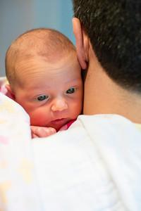 Abigail-newborn_003