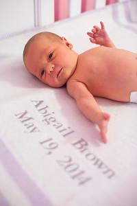 Abigail-newborn_019
