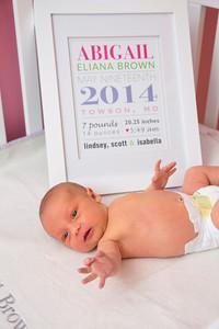 Abigail-newborn_036