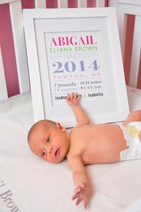 Abigail-newborn_039