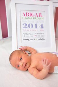 Abigail-newborn_032