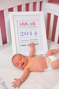 Abigail-newborn_035