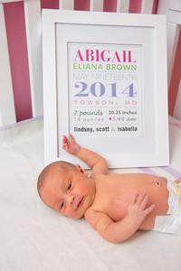 Abigail-newborn_031