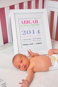 Abigail-newborn_038