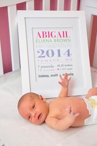 Abigail-newborn_037