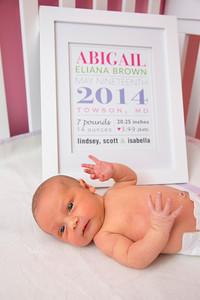 Abigail-newborn_033