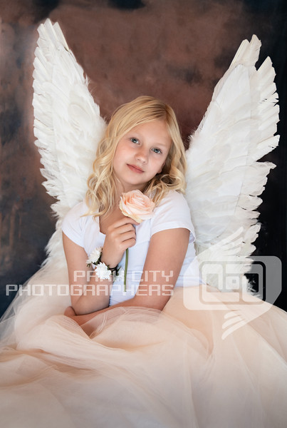 Retouched image - but not final. Final image: all wings, no pillows.