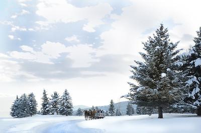 Winter postcard!