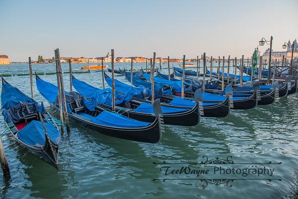 _TD55919-Venice3plus-LG