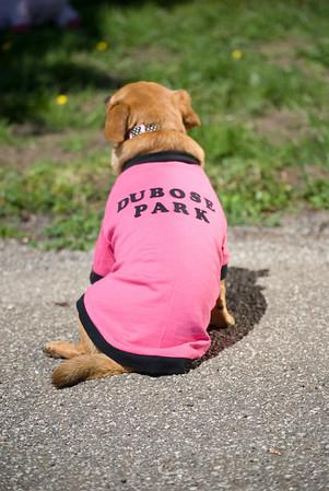 Park Pet Wear-9