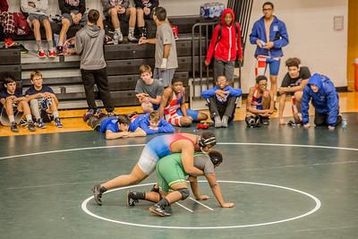 Wrestling 12 2 17-20
