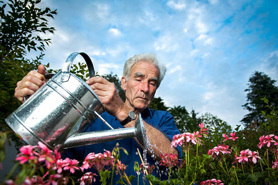 Senior watering his flowers and looking happy